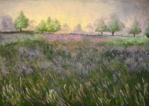 Lavendar Fields (after Elizabeth Mowry)